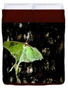 Luna Moth On Tree Duvet Cover