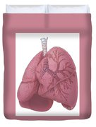 Lungs And Bronchi Duvet Cover