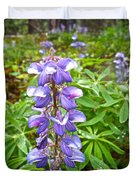 Lupine Along Trail To Rancheria Falls In Yk-canada   Duvet Cover