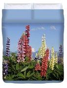 Lupinus Flowers Hokkaido Japan Duvet Cover