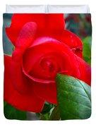 Luss Rose Duvet Cover