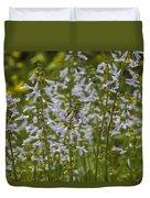 Lyreleaf Sage Wildflowers - Salvia Lyrata Duvet Cover