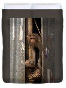 Macaque Peeking Out Duvet Cover