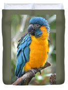 Macaw Profile Duvet Cover