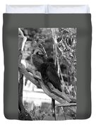 Macaws Of Color B W 15 Duvet Cover