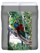 Macaws Of Color24 Duvet Cover