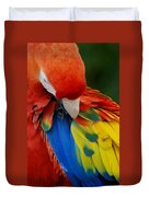 Macaws Of Color25 Duvet Cover