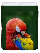 Macaws Of Color26 Duvet Cover