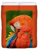 Macaws Of Color29 Duvet Cover