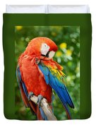 Macaws Of Color31 Duvet Cover