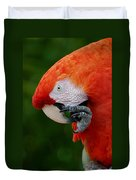 Macaws Of Color32 Duvet Cover