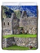 Machu Picchu - Grazing Lamas Duvet Cover