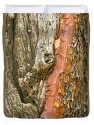 Madrone Tree Bark Duvet Cover