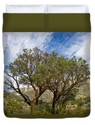Madrone Trees Duvet Cover