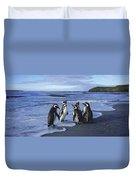 Magellanic Penguin Trio On Beach Duvet Cover