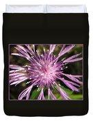 Magenta Fireworks Duvet Cover