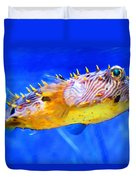 Magic Puffer - Fish Art By Sharon Cummings Duvet Cover