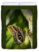 Magnificent Owl Butterfly Duvet Cover