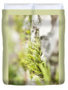 Maiden-hair Spleenwort Duvet Cover
