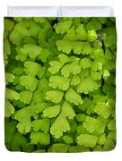 Maidenhair Fern Duvet Cover