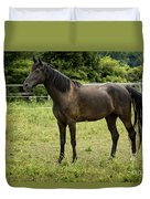 Majestic Stallion Horse In A Pasture Duvet Cover