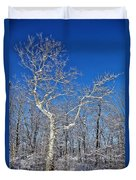 Majestic Sycamore In Winter Duvet Cover