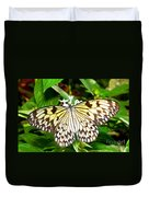 Malabar Tree Nymph Butterfly Duvet Cover
