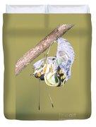 Malachite Butterfly Emerging 4 Of 6 Duvet Cover