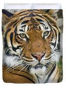 Malayan Tiger 1 Duvet Cover