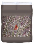 Male Cardinal Cold Day 2 Duvet Cover