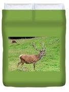 Male Deer On Field Duvet Cover