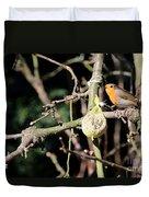 Male European Robin Duvet Cover