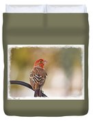 Male House Finch - Digital Paint And Frame Duvet Cover