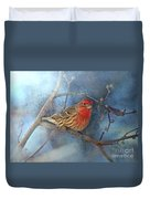 Male House Finch With Blue Texture Duvet Cover