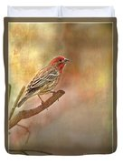 Male Housefinch Looking Up Duvet Cover