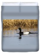 Male Lesser Scaup Duvet Cover