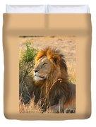 Male Lion Duvet Cover