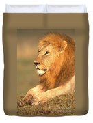 Male Lion Duvet Cover