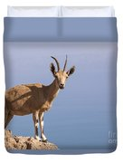 Male Nubian Ibex 1 Duvet Cover