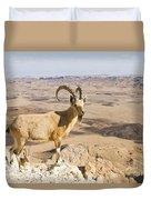 Male Nubian Ibex Capra Ibex Nubiana 1 Duvet Cover