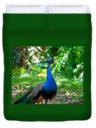 Male Peacock Duvet Cover