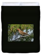 Male Red-shafted Northern Flicker Duvet Cover