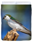 Male Violet-green Swallow Duvet Cover