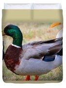 Mallard Colors Duvet Cover