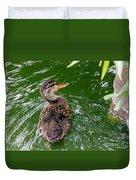 Mallard Duckling Duvet Cover