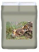 Mallard Ducklings And Mom Duvet Cover