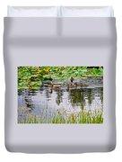 Mallard Ducks In Heron Pond In Grand Teton National Park-wyoming  Duvet Cover