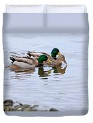Mallard Ducks Duvet Cover