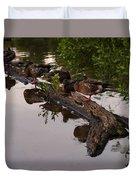 Mallard Ducks Sleeping On A Log Duvet Cover