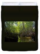 mangrove forest in Costa Rica 1 Duvet Cover